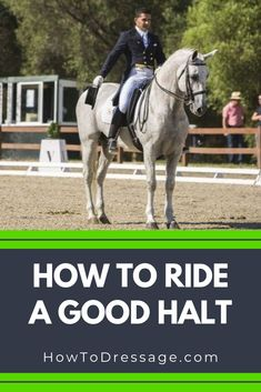 One movement that appears at least once in every dressage test is the halt. So, how can you teach your horse to halt well? Horse Riding Tips, Horse Tips, Dressage, Horse Exercises, Riding Hats, Riding Gear, Types Of Horses, Equestrian Outfits, Equestrian Style