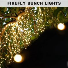 Our Firefly Bunch Lights have a flexible, bendable wire with warm white micro LEDs so you can create magical lighted designs. Simply shape, bend and twist them however you like – the lights can be used bundled or separate the individual strings…Read Backyard Lighting, Outdoor Lighting, Lighting For Gardens, Garden Lighting Ideas, Porch Lighting, Starry Lights, Xmas Lights, Displays, Table Top Display