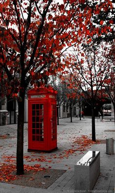 2 Weeks in the UK–my Perfect UK Trip Itinerary Phone Box - Photography Subjects Red Aesthetic, Travel Aesthetic, Aesthetic Pictures, Aesthetic Women, Aesthetic Clothes, Garden Ideas England, Landscape Photography, Nature Photography, City Photography