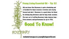 Rosemary one truly powerful oil!  melanietoneguzzo.younglivingworld.com