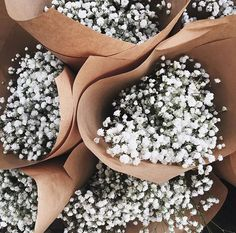 springtime flowers wrapped in brown paper bring all the spring vibes Flower Aesthetic, White Aesthetic, Spring Aesthetic, My Flower, Beautiful Flowers, Flowers Nature, White Flowers, Roses Photography, Foto Blog