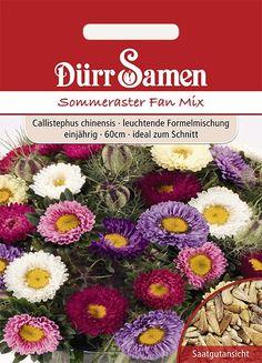 Dürr Samen Sommeraster Fan Mix, gelb, einjährig