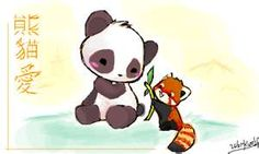 Chibi panda with Cute little Racoon! - Sketchfu <<< This is a red panda. They are the most adorable creatures on the planet earth and are, in fact, more closely related to racoons than bears. They spend most of their time in the trees, eating and sleeping. They eat bamboo, similarly to their Giant panda friends.