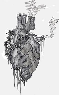 organs drawing - Recherche Google