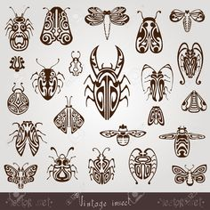 Vintage Insect Silhouette Set Royalty Free Cliparts, Vectors, And Stock Illustration. Pic 23765101.