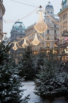 Streets of Vienna during winter