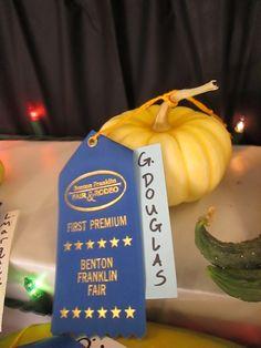 Our Mini pumpkins.