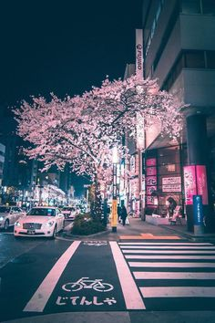 Shibuya, Tokyo - 15 Truly Astounding Places To Visit In Japan Aesthetic Japan, City Aesthetic, Japanese Aesthetic, Travel Aesthetic, Night Aesthetic, Purple Aesthetic, Retro Aesthetic, Japan Honeymoon, Japan Street