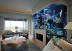 Who needs a mantel when you have an entire wall fish tank built around the fire place. Aquarium Mural, Home Aquarium, Aquarium Design, Aquarium Fish Tank, Fish Aquariums, Aquarium Ideas, Unique Fish Tanks, Cool Fish Tanks, Saltwater Fish Tanks