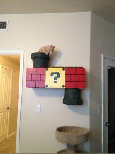 Un chat se prend pour Mario grâce à un décor mural