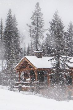 Would love to spend a week in a cabin and catch some snowflakes!