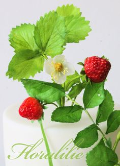 Sugar Strawberries and Wafer Paper Leaves | Floralilie Sugar Art