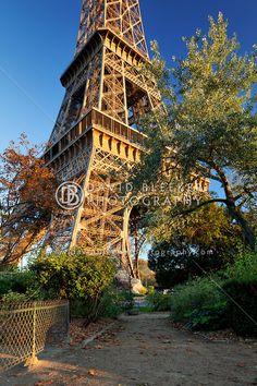 Paris Eiffel Tower   David Bleeker Photography