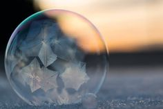 Frozen bubbles make perfect easel for Mother Nature