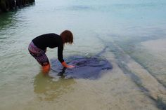 A weekend trip to Cape Agulhas & Struisbaai and the meeting with stingrays in the habor
