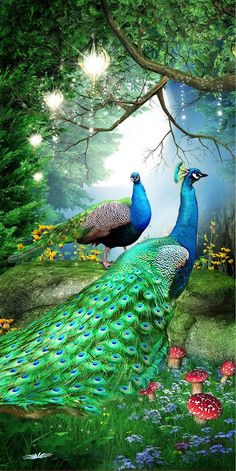 Emerald Peacock Painting