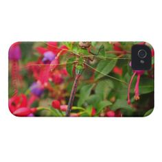 >>>Order          Common Green Darner Dragonfly iPhone 4 Case           Common Green Darner Dragonfly iPhone 4 Case lowest price for you. In addition you can compare price with another store and read helpful reviews. BuyDeals          Common Green Darner Dragonfly iPhone 4 Case lowest price...Cleck link More >>> http://www.zazzle.com/common_green_darner_dragonfly_iphone_4_case-179911860320112237?rf=238627982471231924&zbar=1&tc=terrest