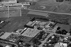 Aerial view, School, Rosemount, 1972