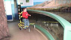 Buddy Roamer - YouTube Pediatric Physical Therapy, Feeding Tube, Cerebral Palsy, Special Needs Kids, Baby Boy Newborn, Pediatrics, Body Weight, Walking, Adaptive Equipment