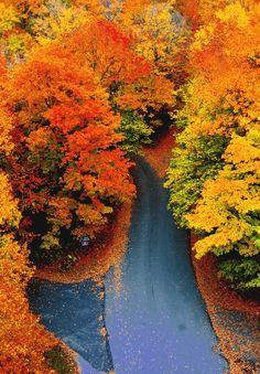 Magnifique couleur d'automne, chaud, chaud chaud!