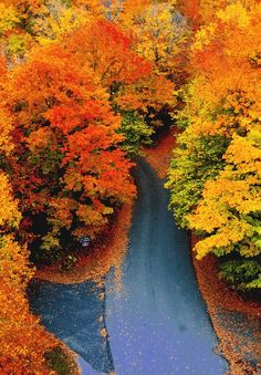 Autumn Road, Woodstock, Vermont  photo via woody