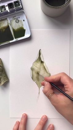 Sketching and watercoloring an Autumn leaf by Skyla Design. Music by Eveningland Sketching and watercoloring an Autumn leaf by Skyla Design. Music by Eveningland Watercolor Painting Techniques, Watercolor Video, Watercolor Leaves, Watercolour Tutorials, Watercolour Painting, Watercolor Portrait Tutorial, Watercolor Rose, Watercolor Sketch, Painting Videos