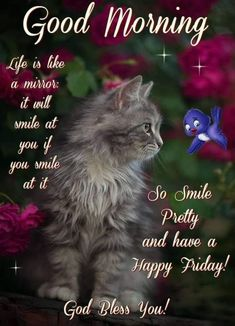 10 Friday Quotes And Sayings For A Beautiful Day Friday Morning Images, Friday Morning Quotes, Good Morning Coffee Images, Good Friday Images, Love Good Morning Quotes, Good Morning Happy Friday, Happy Friday Quotes, Morning Quotes Images, Cute Good Morning