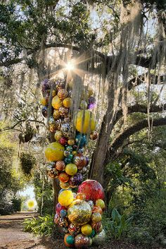 Chihuly under the Spanish Moss. — at Fairchild Tropical Botanic Garden. Pedro Lastra.