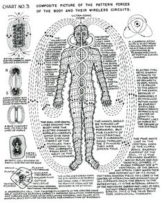 """lucifelle: """" Polarity Therapy Charts """"The Wireless Anatomy of Man"""" Its neat to see this in chart form as we bring these concepts to life during massage. Tantra, Les Chakras, Spirit Science, Kundalini Yoga, Holistic Healing, Chakra Healing, Book Of Shadows, Sacred Geometry, Health"""