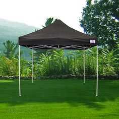 Have to have it. Impact Canopy Traditional Instant Canopy Kit $156.99
