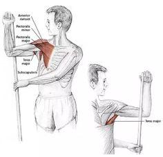 15 Estiramientos para aliviar la tensión en el cuello y los hombros - Mundoamores Stretching, Reiki, Pilates, Fitness, Gym, Workout, Deco, Yoga, Physical Therapy