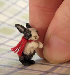 Miniature Rabbit by Aleah Klay. How sweet is this little rabbit!