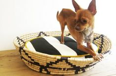 >palma hand woven dog beds   mexchic
