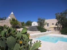 Trullo Gioia, Puglia, Italy.  In the foreground, the Opuntia ficus-indica know in Italy as 'fico d'india' provides privacy around the pool.  In background are the traditional Puglian lamie and trullo structures.