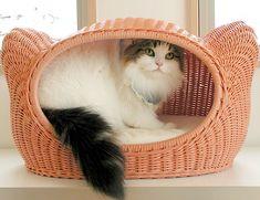 【送料無料】【ラタンキティハウス~シャトン/シンシア】 ( ベッド ) - 猫専門店ゴロにゃん★公式通販サイト|猫の首輪・猫用品・フード|