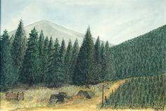Weg in den Bergen, U. Kretschmer