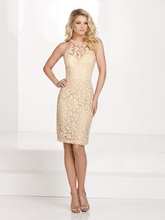 Sleeveless hand-beaded lace knee-length sheath, lace illusion high modified halter neckline with beaded collar, sweetheart bodice, center back slit, suitable for wedding guests, formal events, and coc