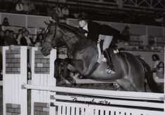 Many of today's top U.S. show jumping riders got their start in the junior hunter and jumper divisions. Nicole Shahinian (now Simpson) won the small junior hunter championship, the AHSA Medal, sec. A, the large junior hunter reserve championship, and was named Best Child Rider at the Devon Horse Show in 1990. She's shown here on Bold Headlines. Photo by Pennington Galleries.