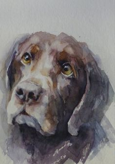 #ChocolateLab #ChocolateLabradorRetriever #ChocolateLabArt #DogArt