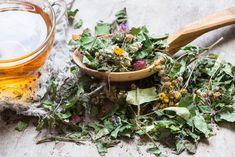 How to use herbal hair tea rinses Teas For Headaches, Tea For Colds, Bio Tee, Soften Hair, Hair Rinse, Hair Scalp, Wet Hair, Cold Home Remedies, Tea Benefits