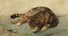 Julius Adam the Younger - Cat lying