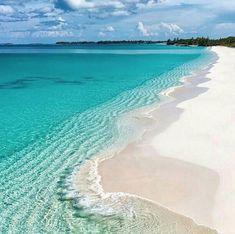 Reposting @gottexswim: Turquoise waves in Nassau 💙 . . . #gottex #swim #springcollection #cruise #vacation #summer #sun #beach #bikini #water #picture #beachfun #beautiful #relaxation #swimwear #swimsuit #beachwear #bikinimodel #bikini #beauty #style #sea #ocean #luxury #destination Swimsuits, Bikinis, Swimwear, Nassau, Cruise Vacation, Beauty Style, Beach Fun, Summer Sun, Bikini Models