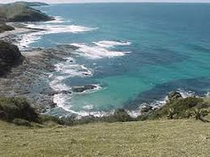 hluleka nature reserve - Google Search South Afrika, Port Elizabeth, Nature Reserve, Bird Watching, Hiking Trails, Homeland, Outdoor Activities, Coast, Explore