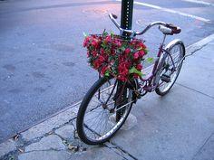Google Image Result for http://pinkmohair.typepad.com/photos/uncategorized/2008/04/01/bike.jpg