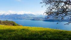 Schweiz: Das Berner Oberland Mountains, Nature, Travel, Vacation Travel, Switzerland, Nice Asses, Naturaleza, Viajes, Destinations