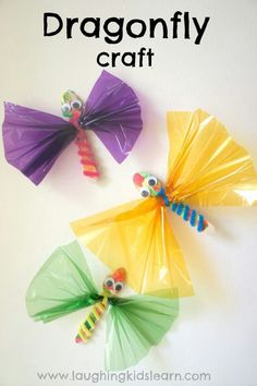Dragon fly or butterflies !