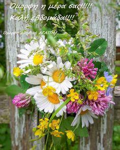 Unusual Flowers, Beautiful Flowers, Beautiful Pictures, Good Morning Dear Friend, Bellisima, Flower Power, Wild Flowers, Greenery, Floral Wreath