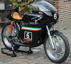 Benelli 250 classic racer