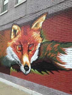 Rochester NY wall therapy - mr prvrt