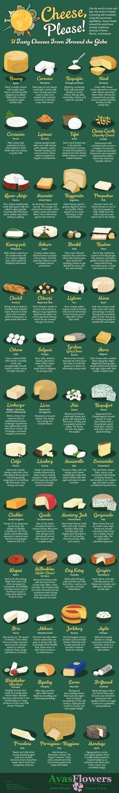 Cheese Please! 51 Tasty Cheeses From Around the Globe - www.avasflowers.net/?utm_content=bufferd1acb&utm_medium=social&utm_source=pinterest.com&utm_campaign=buffer - Infographic